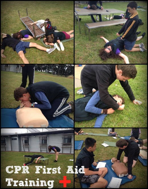 Term 4 - CPR First Aid Training