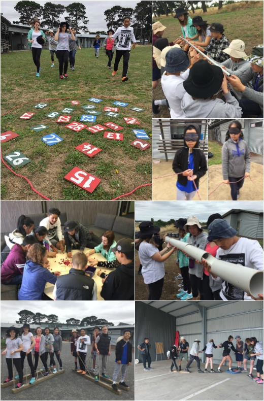 Term 1, 2017 - Team Activities